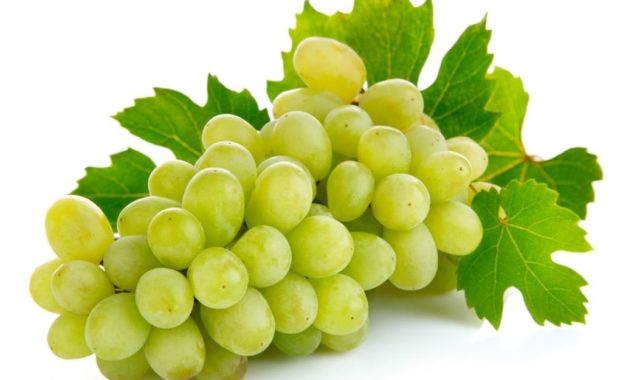 Grapes11 1020x765 1.jpg