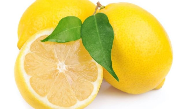 Lemon3 1020x765 1.jpg