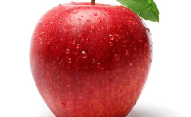 Apple 16.jpg